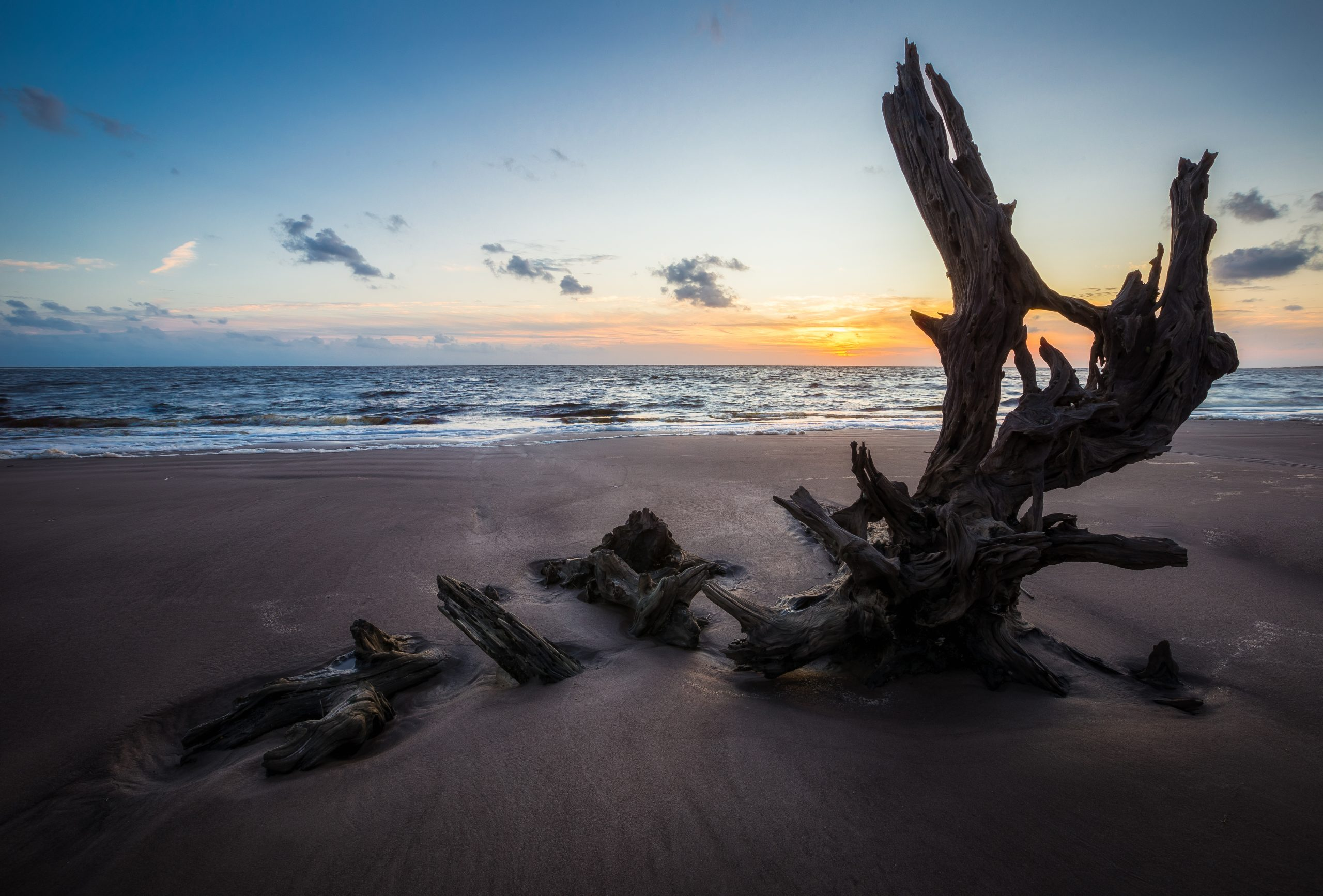 GPW Law Firm is a Leader in Georgia Public Finance - Photo taken at Big Talbot Island at sunrise of a piece of driftwood